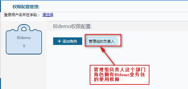 FineBI商务智能平台权限配置